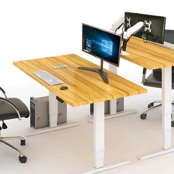 EDF02D + DT148 Height Adjustable Standing Desk w/ monitor arm stands